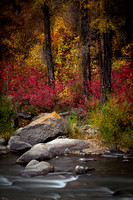 Fall on the Eagle River 203