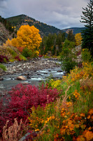 Fall on the Eagle River 228